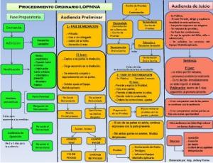 procedimiento_ordinario_lopnna_2